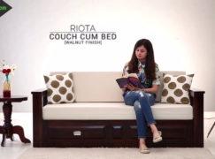 Sofa giường bằng gỗ – Vẻ đẹp hiện đại trong chất mộc